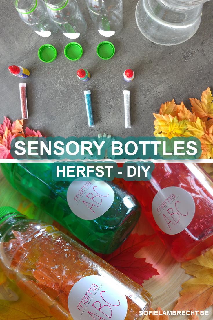 SENSORY BOTTLES HERFST DIY