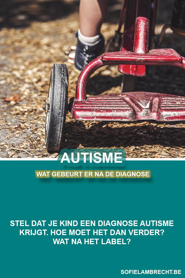 Wat na de diagnose autisme