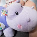 Review VTech Baby Magisch Droomnijlpaard