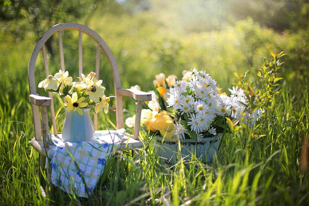 genieten van de tuin mama abc blog