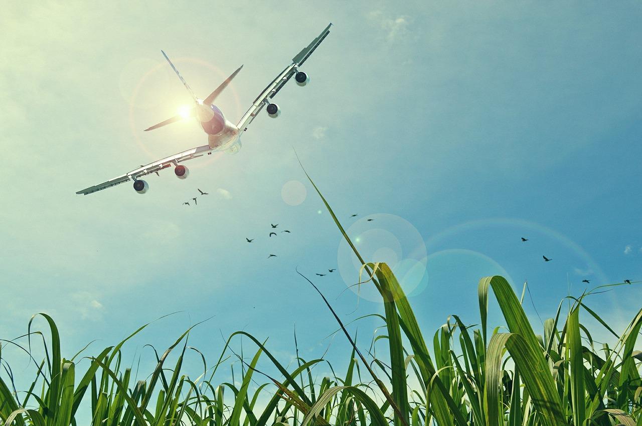 Tips om te vliegen met kinderen